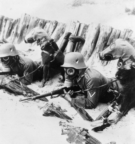 Soldados alemanes y sus perros con máscaras de gas. © Bettmann/CORBIS