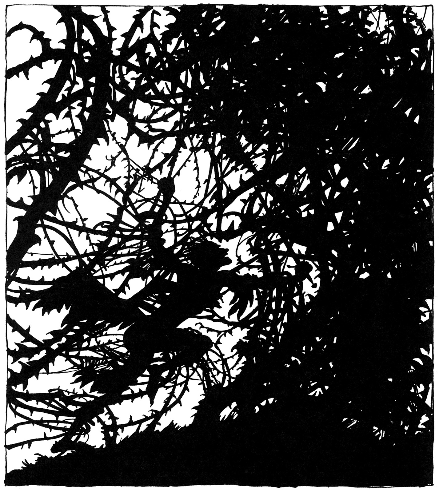 arthur rackham_the sleeping beauty_16