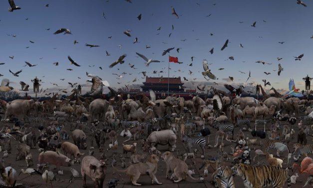 Rebelión en la granja, George Orwell: Del igualitarismo a la tiranía