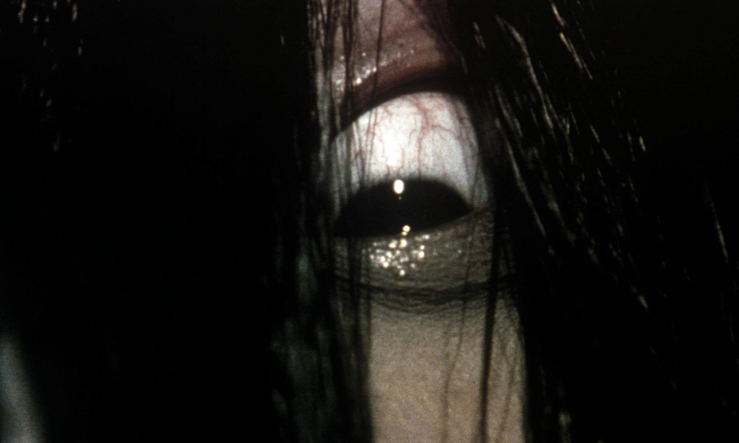 The Ring Koji Suzuki English Pdf